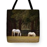 The Horse And The Pony - Standard Size Tote Bag