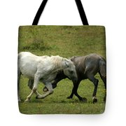 The Horse Ballet Tote Bag