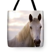 The Horse In The Setting Sun Tote Bag