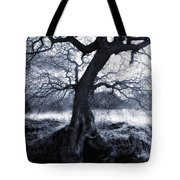 The Horseman Rides Tonight Tote Bag by Donna Blackhall