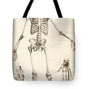 The Human Skeleton Tote Bag