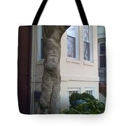 The Human Tree Tote Bag