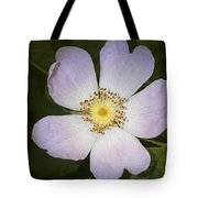 The Humble Dog Rose Tote Bag