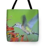 The Humming Bird Sips  Tote Bag by Jeff Swan