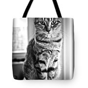 The Hypnotist Tote Bag
