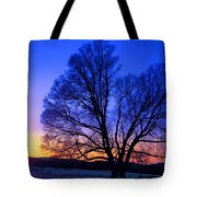 The Incomparable Patience And Fidelity Tote Bag