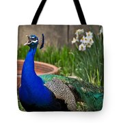 The Indian Peafowl Tote Bag