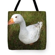 The Inquisitive Goose Tote Bag