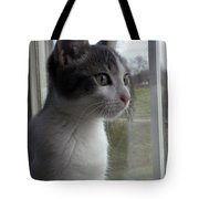 The Inquisitive Kitty Jackson Tote Bag