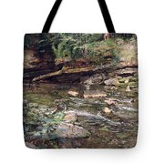 The Kelpie And The Highlander Tote Bag