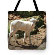 The Kid Tote Bag