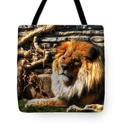 The King Lazy Boy At The Buffalo Zoo Tote Bag