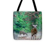 The King Tote Bag by Thomas Young