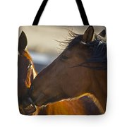 The Kiss   #3423 Tote Bag