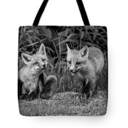 The Kits Monochrome Tote Bag