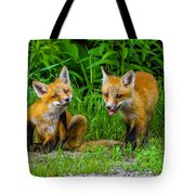 The Kits Tote Bag