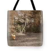 The Labradoodle On The Go Tote Bag