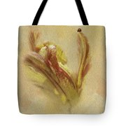 The Lady And The Parrot Tulip Tote Bag