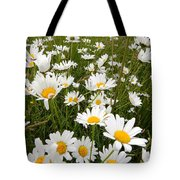 The Land Of White Daisies Tote Bag