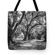 The Lane Bw Tote Bag by Steve Harrington