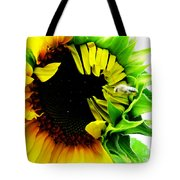 The Largest Sunflower In The Garden Summer Of 2013 Tote Bag