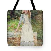 The Last Chore Tote Bag