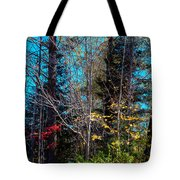 The Last Days Of Autumn Tote Bag