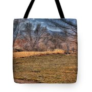 The Last Days Of Fall Tote Bag