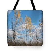 The Last Leaves Tote Bag