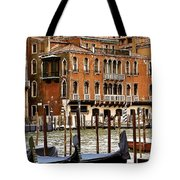 The Last Pigeon In Venice Tote Bag