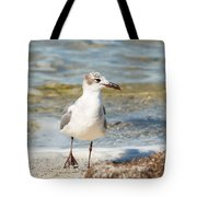 The Laughing Gull Strut Tote Bag