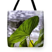 The Leaf Of A Water Plant Tote Bag