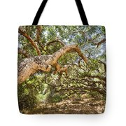 The Life Of Oaks - The Magical Trees Of The Los Osos Oak Reserve Tote Bag