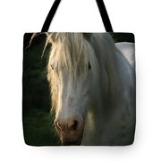 The Light In The Mane Tote Bag