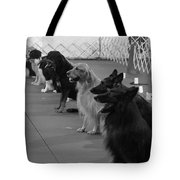 The Lineup Tote Bag