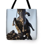 The Lion Fighter Tote Bag by Bill Cannon
