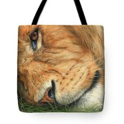 The Lion Sleeps Tote Bag by David Stribbling