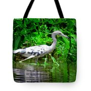 The Little Blue Heron Tote Bag