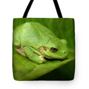 The Little Frog Tote Bag