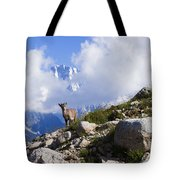 The Little Ibex Tote Bag
