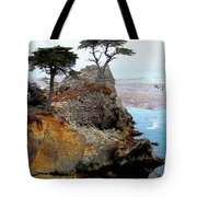 The Lone Cypress - Pebble Beach Tote Bag by Glenn McCarthy Art and Photography