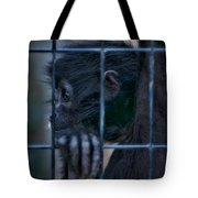 The Look Of Captivity Tote Bag