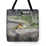 The Lounging Tiger 1 Tote Bag