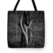 The Lovers Number 2 Tote Bag