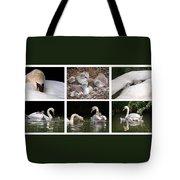 The Magic Of Spring Panorama Tote Bag