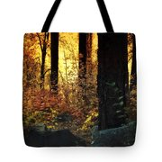 The Magic Of The Forest  Tote Bag