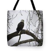 The Majestic Eagle Tote Bag