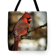 The Male Northern Cardinal Tote Bag