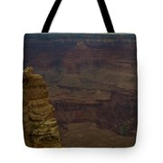 The Many Colors Of The Grand Canyon Tote Bag