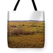 The Marsh At Cape Henlopen Tote Bag